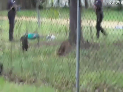 Video Shows White Police Officer Shooting Walter Scott 8 Times In The Back